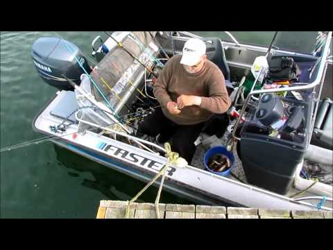 Fishing report - PERCH DAYS & NIGHTS Video