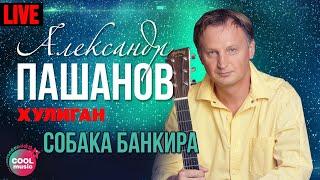 Александр Пашанов - Собака банкира