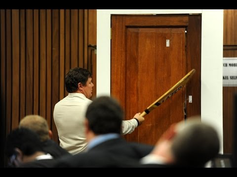 Oscar Pistorius Trial Day 8 summary