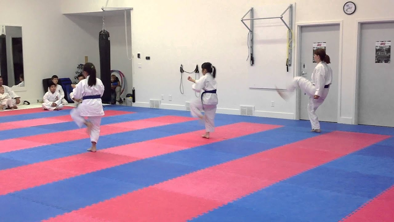 Blue Belts Testing For Purple