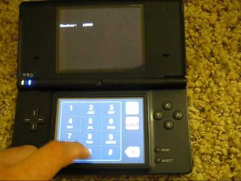 Homebrew Running on the Nintendo DSi