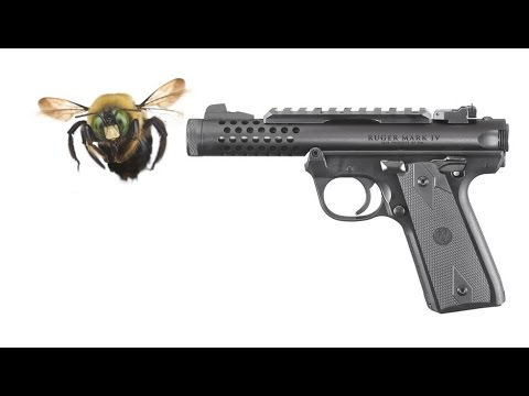 Shootin' the Bees (home-destroying ones)