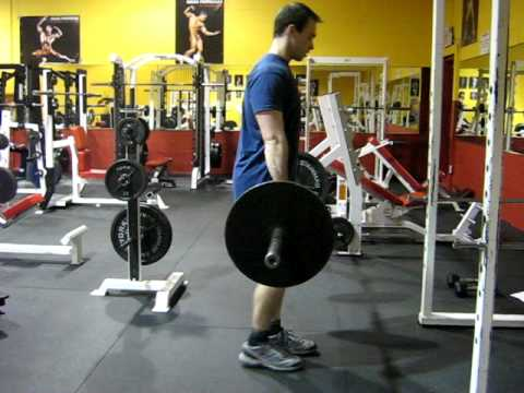 Bent Over row (pronation)