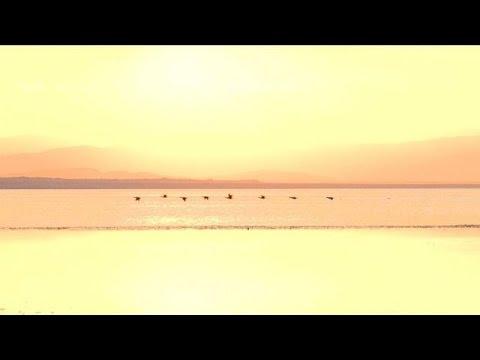 The Salton Sea: a time-bomb amid California drought