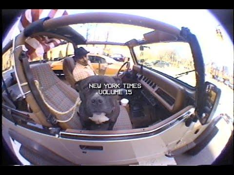 new york times v.15