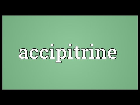 Header of accipitrine