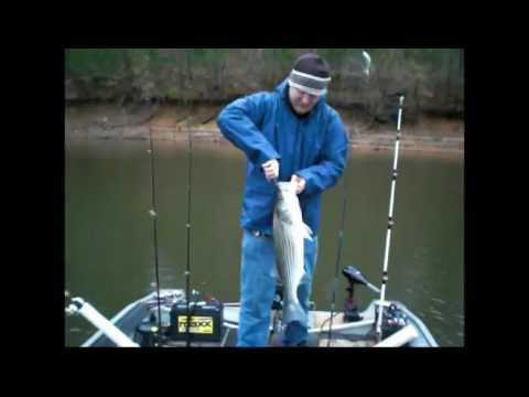 lake allatoona striper fishing