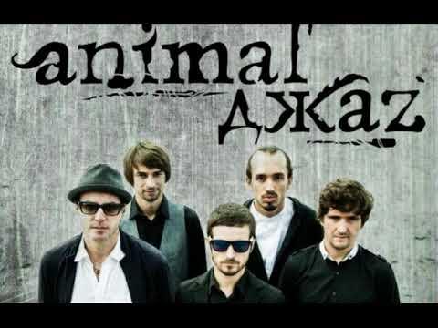 Animal Джаz (Джаз, Jazz) - Из листьев