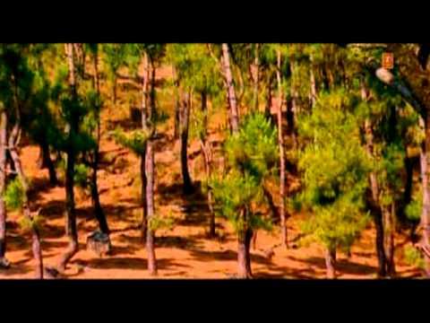 Meethi Meethi Sardi Hai Full Song Saajan Mera Us Paar Hai