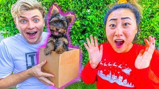 BOYFRIEND SURPRISES ME WITH A PUPPY!!