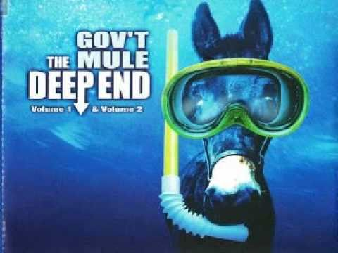 Gov't Mule - Fool's Moon