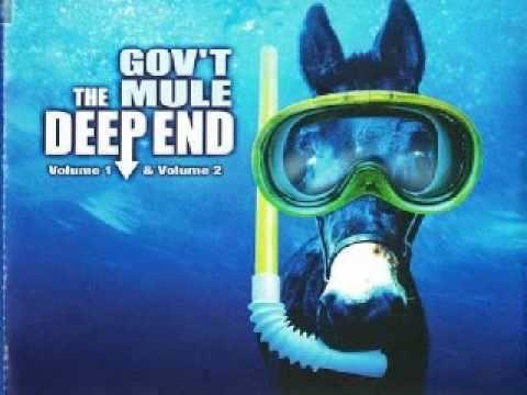 Govt Mule - Fool