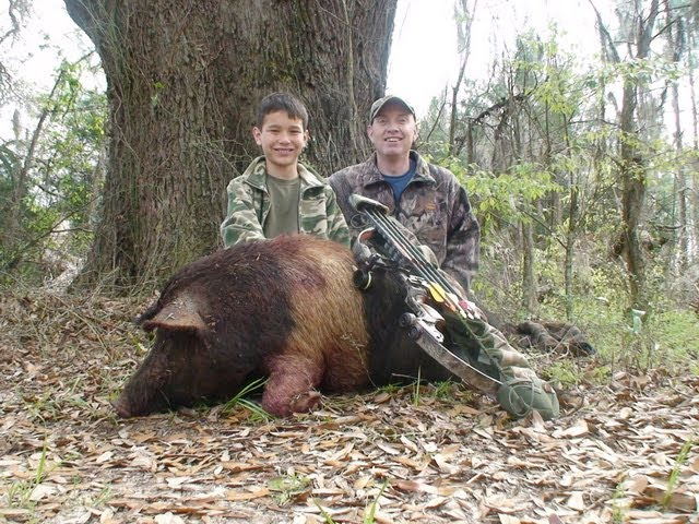 Free Range Wild Boar Bow hunt in Florida for HOGS!