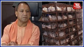 Poultry Farm Owners Meet CM Yogi For The Loss In Their Business
