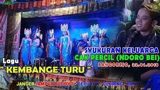 Lagu KEMBANGE TURU Syukuran Cak Percil NDORO BEI Janger SAMPUR BUDOYO live Bangorejo