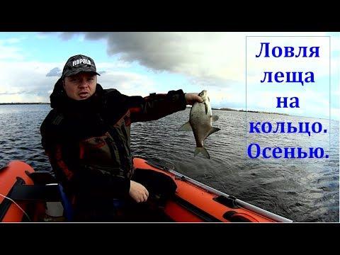 как ловить рыбу на средней волге