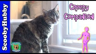 Creepy Companion -- Cat Clips #173