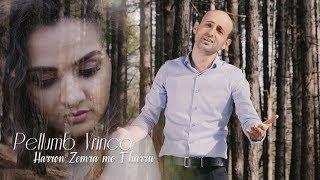 Download Lagu Pellumb Vrinca - Harron zemra me t'harru ( Official Video 4K ) Gratis STAFABAND
