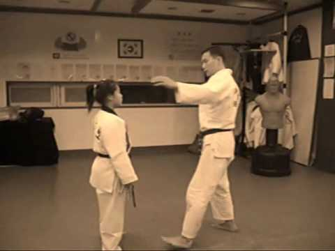 THE KOREA HWARANG MMA-hapkido TRAINING KIM CHANG WAN&KIM HWA RANG.wmv Image 1