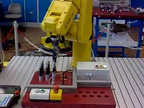 Fanuc Industrial Robot Project