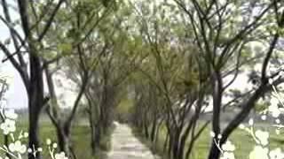 Arkum Shah, Sylhet Region Folk Song  Char Chize Pinjira