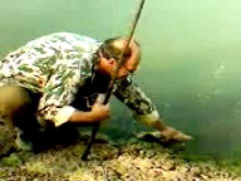 как ловить на плотинах