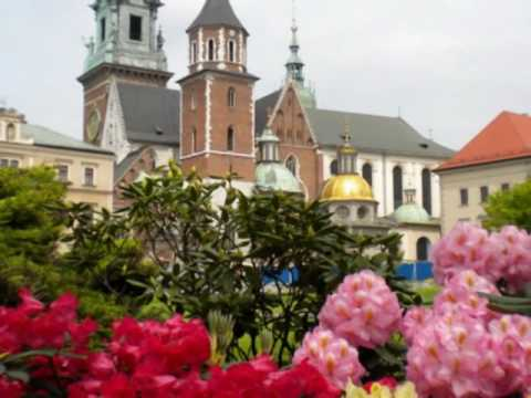 Watch the IBM Corporate Service Corps team at work in Poland