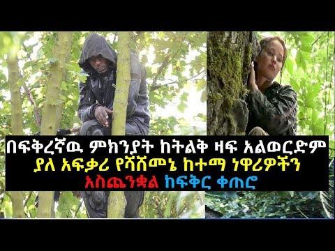 Ethiopia-በፍቅረኛዉ ምክንያት ከትልቅ ዛፍ ላይ አልወርድም ያለ አፍቃሪ የሻሸመኔ ከተማ ነዋሪዎችን አስጨንቋል ከፍቅር ቀጠሮ