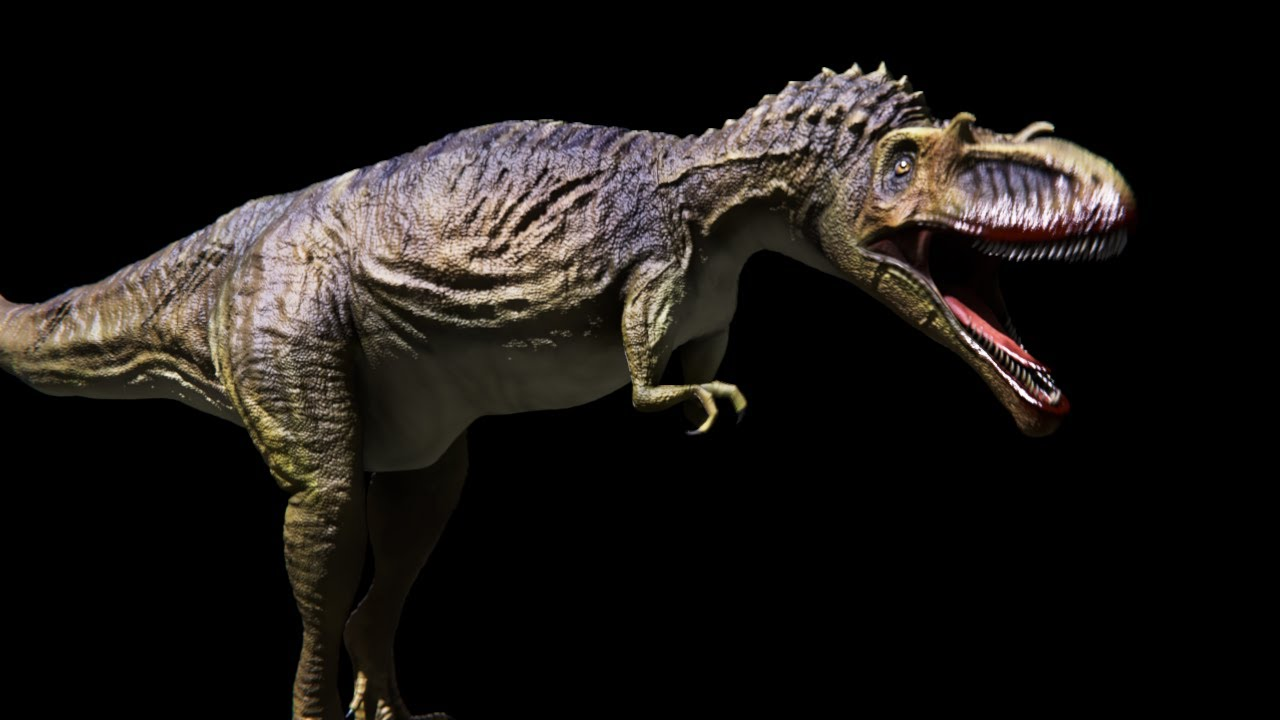 Primeval New World Albertosaurus Primeval New World