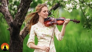 Ontspannende Muziek voor Stress Verlichting, Klassieke Muziek Relaxen, Achtergrondmuziek, ♫E224