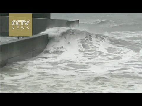 Japan to be hit with the biggest storm in 2014