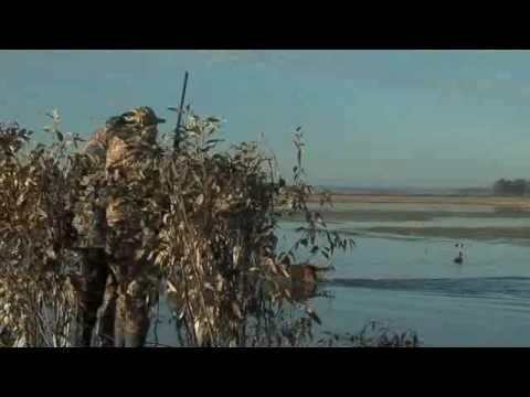 Uruguay Duck Hunting - Life in the Open - Los Gauchos