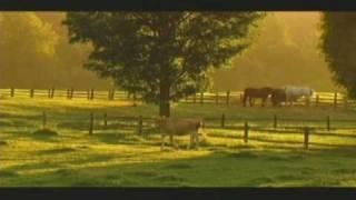 Michael Dulin 39 Simply Satie 39 Music Audio