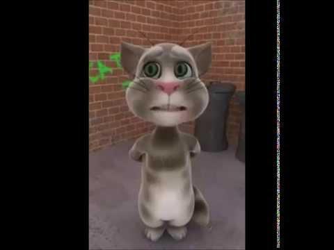 Tom Cat Funny Videos In Urdu & Punjabi video