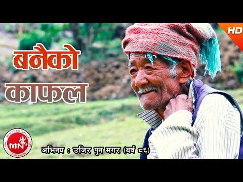 New Nepali Lok Dohori 2074   Banaiko Kafal - Nabin Rana Ft. Ujir Pun Magar