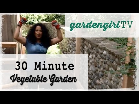 30 Minute Vegetable Garden