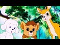 Lagu SIMBA REI LEÃO | Episódio 23 | Português | Simba King Lion