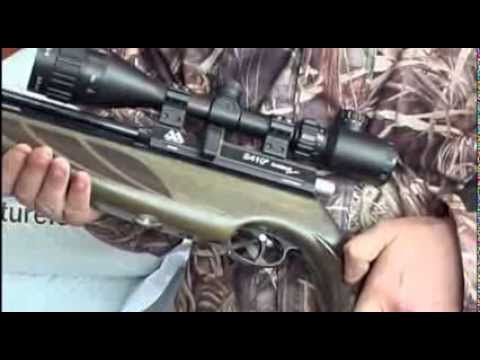 Extreme air gun action - shooting feral pigeons - with Andy Richardson