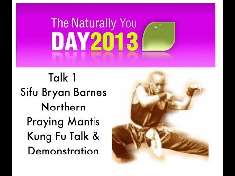 Sifu Bryan Barnes Northern Praying Mantis Kung Fu Demo - NYD 2013 Talks -