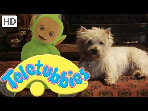 Teletubbies: Dirty Dog - Hd Video video