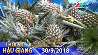 Hướng đi nào cho nông sản Hậu Giang | THỜI SỰ HẬU GIANG - 30/9/2018