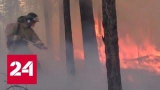 В Иркутской области лесной пожар едва не уничтожил одно из сел - Россия 24