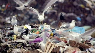 Saving My Tomorrow: Kids Who Love the Earth: Promo (HBO Documentary Films)