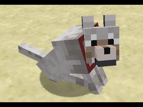 Name Dogs Minecraft