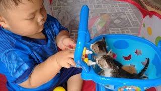 Đồ chơi trẻ em bé pin chăm sóc mèo con❤ PinPin TV ❤ Baby toys hard cat