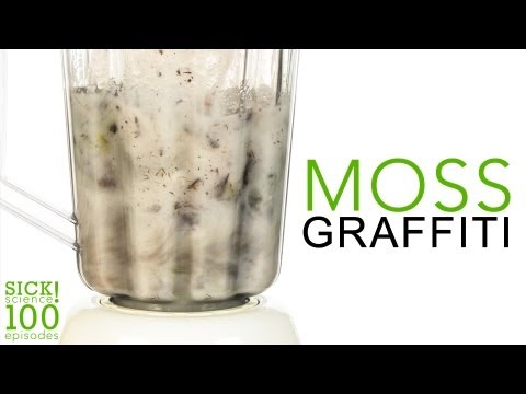 Moss Graffiti - Sick Science! #100