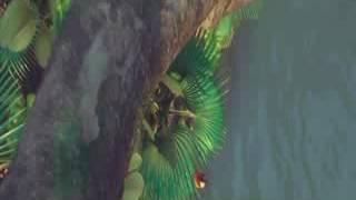 Download পাখির নাচ না দেখলেই মিছ।।।।।।।,,, 3Gp Mp4