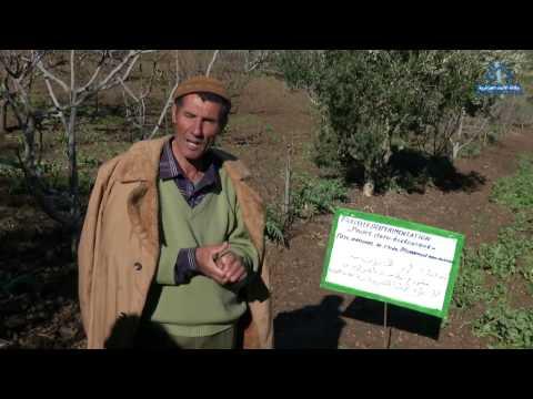 L'agroécologie :La ferme pilote de Sidi Serhane