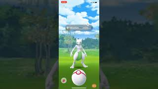 CATCHING A SHINY MEWTWO *Pokemon Go*
