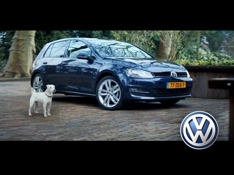 Dog imitates a Golf 7 - Volkswagen 2014 [Pub official VW]